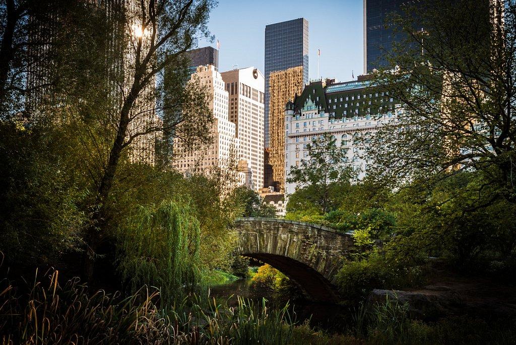Gapstow Bridge im Central Park