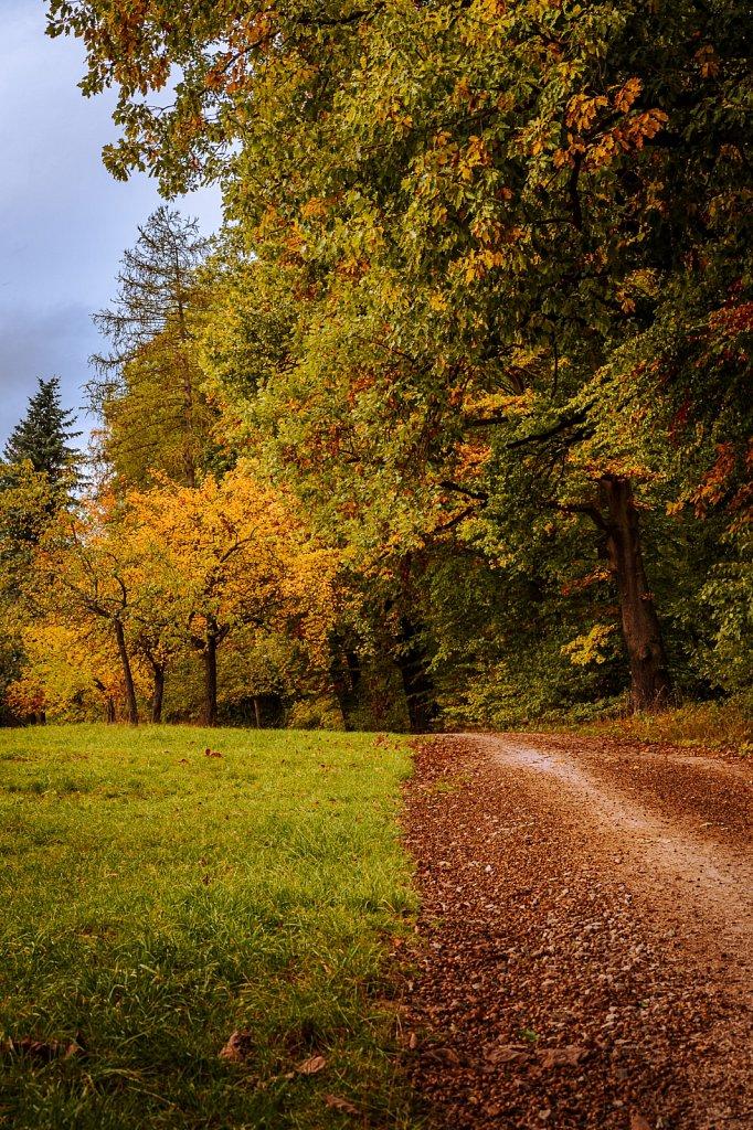 Herbststimmung #2